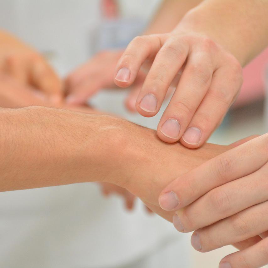 Praxis für Homöopathie und Kinesiologie - Paderborn
